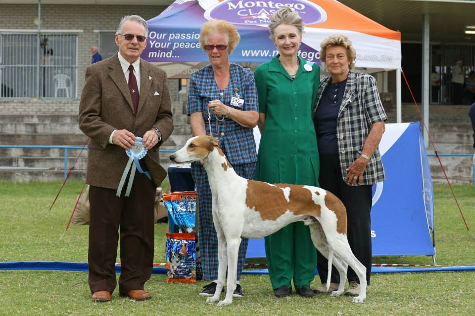 Liesbeek Kennel Club 2014